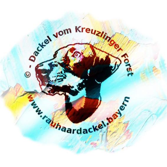 Vorschau-Logo-Mediathek-KF